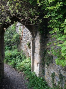 Mells Walled garden - Counselling approach - couples counselling